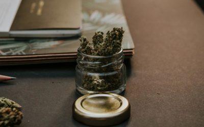 Handeltreiben mit Betäubungsmitteln und Abgrenzung zur Kuriertätigkeit im Drogenstrafrecht