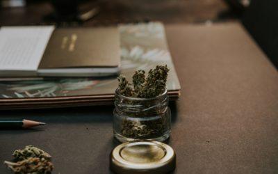 Einstellung von Strafverfahren im Drogenstrafrecht erreicht